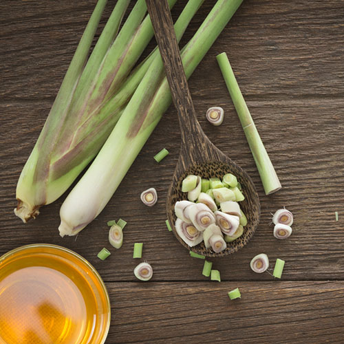 #lemongrass tea for weight loss #lemongrass tea powder #lemongrass chai