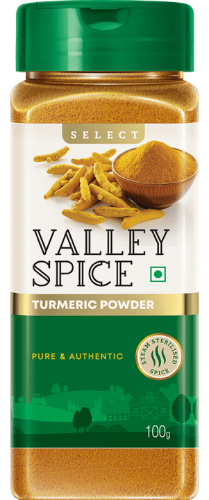 Valley Spice Haldi Powder 100g Bottle